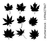isolated leaves on the white...   Shutterstock .eps vector #1496627867