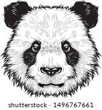 panda cute head  drawing vector | Shutterstock .eps vector #1496767661