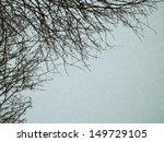 Bare Branches Winter Backgroun...