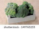 organic broccoli from garden on ...   Shutterstock . vector #149765255