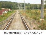 Stock photo hare crosses the railway bunny hare crosses the road wild hare on the railway 1497721427