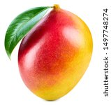 Small photo of Mango isolated on white background. Ripe mango Clipping Path. Mango with leaf