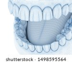Morphology Of Mandibular Human...