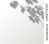 transparent shadows of leaves... | Shutterstock .eps vector #1498773767