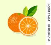 Oranges Illustration. Ripe...