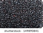 blueberry background | Shutterstock . vector #149890841