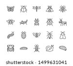 Insect Flat Line Icons Set....