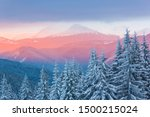Colorful Winter Landscape With...
