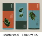 branding packaging tropical... | Shutterstock .eps vector #1500295727
