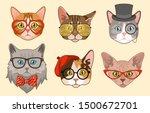 Cat Heads. Cute Funny Cats...