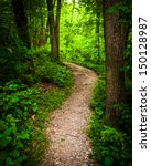 trail through lush green forest ... | Shutterstock . vector #150128987