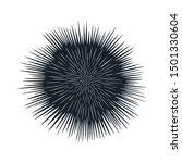 sea urchin graphic icon. sea... | Shutterstock .eps vector #1501330604