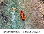 Aerial View Of Rafting On River ...