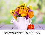 bouquet of marigold flowers in... | Shutterstock . vector #150171797