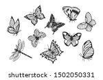 set of butterflies  dragonfly.... | Shutterstock .eps vector #1502050331