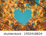 Autumn fall love background....