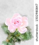 Watercolor Image  Pink Of...