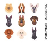 dogs faces collection. vector... | Shutterstock .eps vector #1503583937