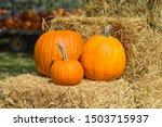 3 Pumpkins On Hay Bales At A...