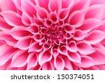 Abstract Closeup Macro  Of Pin...