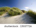 Sand Dunes In The Holland Desert