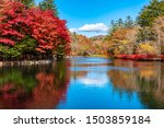 Kumobaike Pond Autumn Foliage...