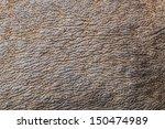 Seamless Rhino Skin Surface...
