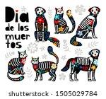 mexican dead animals. cats... | Shutterstock .eps vector #1505029784