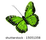 Stock photo a green butterfly isolated on white 15051358