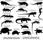 collection of silhouettes of... | Shutterstock .eps vector #1505194451