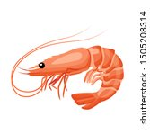 Shrimp icon in flat style, fresh sea food. Isolated on white background. Vector illustration.