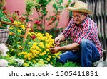 Gardening. Man Working In The...