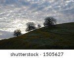 Buttermilk Sky Over Field Of...