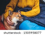 Stock photo girl hug resting dog together in campsite close up portrait red shiba inu sleeping in camp tent 1505958077