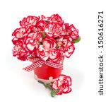 beautiful pink carnations... | Shutterstock . vector #150616271