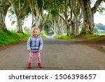 Cute Toddler Girl Walking On A...
