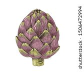 colorful hand drawn artichoke...   Shutterstock .eps vector #1506472994
