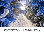 Winter Snow Forest Road Scene....