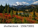 Autumn Colors In Mt. Rainier...