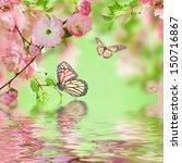 Pink Flower Of An Oriental...