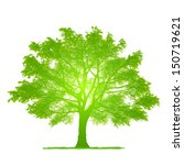 vector drawing of the tree  ... | Shutterstock .eps vector #150719621