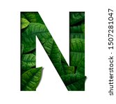 leafs font n made of real alive ...   Shutterstock . vector #1507281047
