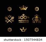 set of premium  emblems for... | Shutterstock .eps vector #1507544834