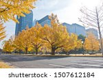 Small photo of Golden leaves foliage gingko Maidenhair trees in front of high-rise corporate office buildings in late Autumn in Tokyo Japan