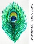 Illustration Hand Drawn Peacock ...