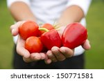 group of vegetables in human... | Shutterstock . vector #150771581