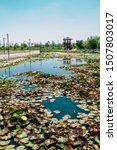 Lotus field and pavilion at Wangsong Lake park in Uiwang, Korea