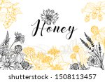 Flower Honey Vector Hand Drawn...