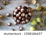Chestnuts. Buckeyes. Autumn...