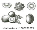 antique engraving illustration...   Shutterstock .eps vector #1508272871